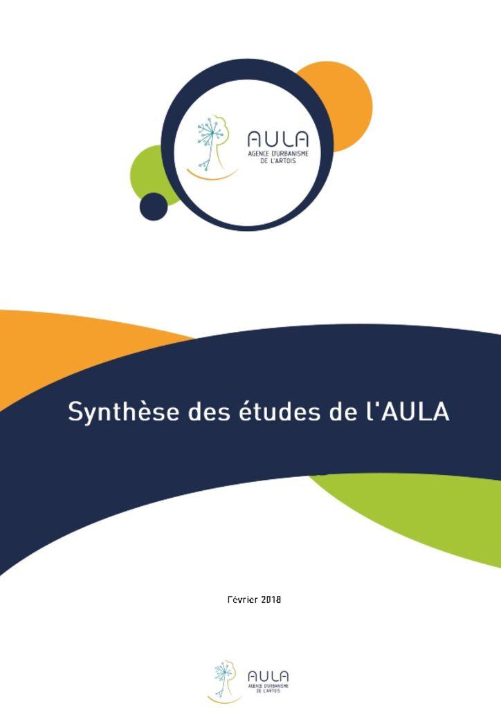 thumbnail of Synthèse des études de l'AULA